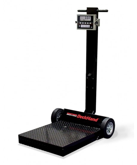 Rice Lake Weighing DeckHand Rough-n-Ready System with 482 Plus indicator with internal battery, 500 lb, 115 VAC, NTEP approved