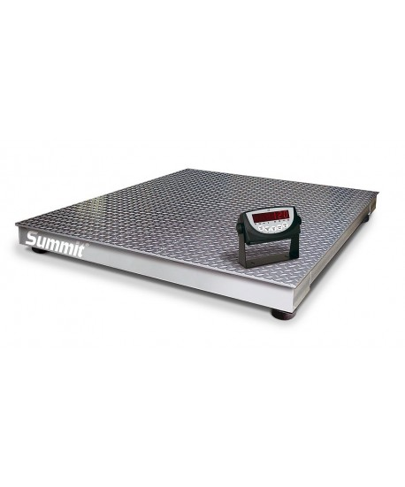 Rice Lake Weighing Summit 3000 Floor Scale Package with 120 Indicator, 5000 lb x 1 lb, 115 VAC, NTEP approved