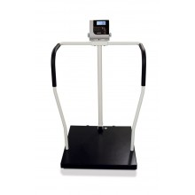 Rice Lake Weighing 260-10-1 Bariatric Handrail Scale, 800 lb x 0.2 lb, with USB
