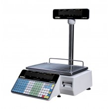 Ishida Astra II Price Computing Pole Scale with printer, 30 lb x 0.01 lb, NTEP approved