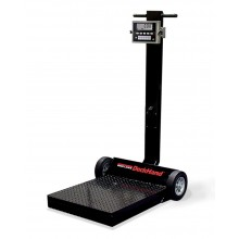 Rice Lake Weighing DeckHand Rough-n-Ready System with IQ plus 590-DC indicator, 1,000 lb, 115 VAC, NTEP approved