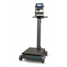 Rice Lake Weighing RL1200IS Series Intrinsically Safe Electromechanical Portable Beam Scale with 882IS Plus indicator, 1000 lb, NTEP approved