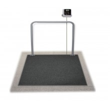 Rice Lake Weighing SB-1150-WPBT Summit Dialysis Wheelchair In-Ground Scale, 1000 lb x 0.2 lb, with USB and Bluetooth