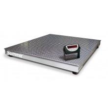 Rice Lake Weighing Summit 3000 Floor Scale Package with 120 Indicator, 10,000 lb x 2 lb, 115 VAC, NTEP approved